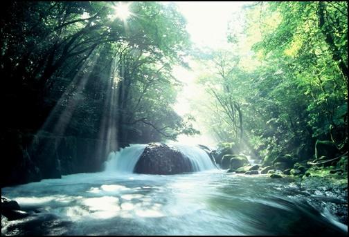 水源の画像