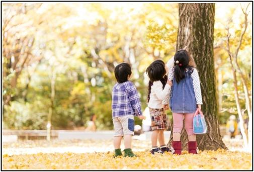 子供が木の上を見る画像
