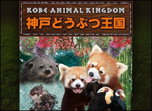 神戸動物王国の画像