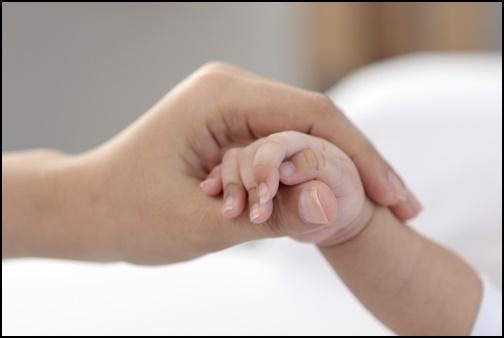 親子の手つなぎの画像