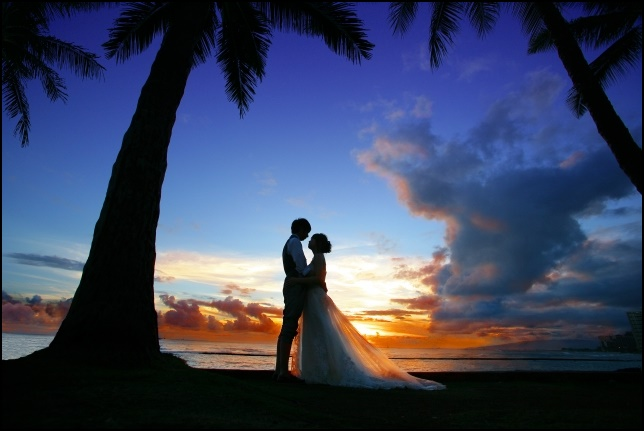 南国の浜辺でプロポーズしている画像
